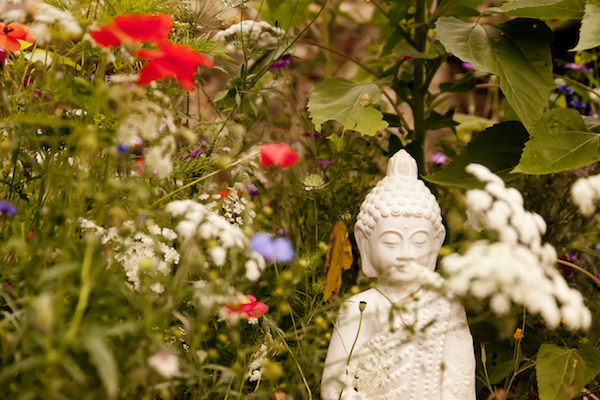 Picture of Buddha and poppies